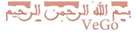حصريا كليب وائل جسار نخبى